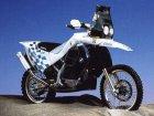 BMW F 650RR Dakar
